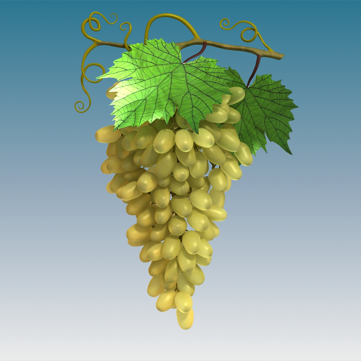 Grapes Cluster Green 3d model 3ds max fbx c4d lwo lws lw obj 204230