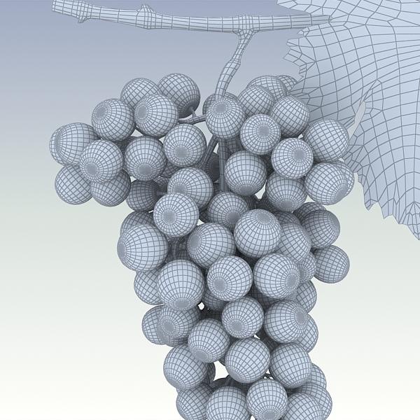 green grapes 3d model 3ds max fbx lwo texture obj 204245