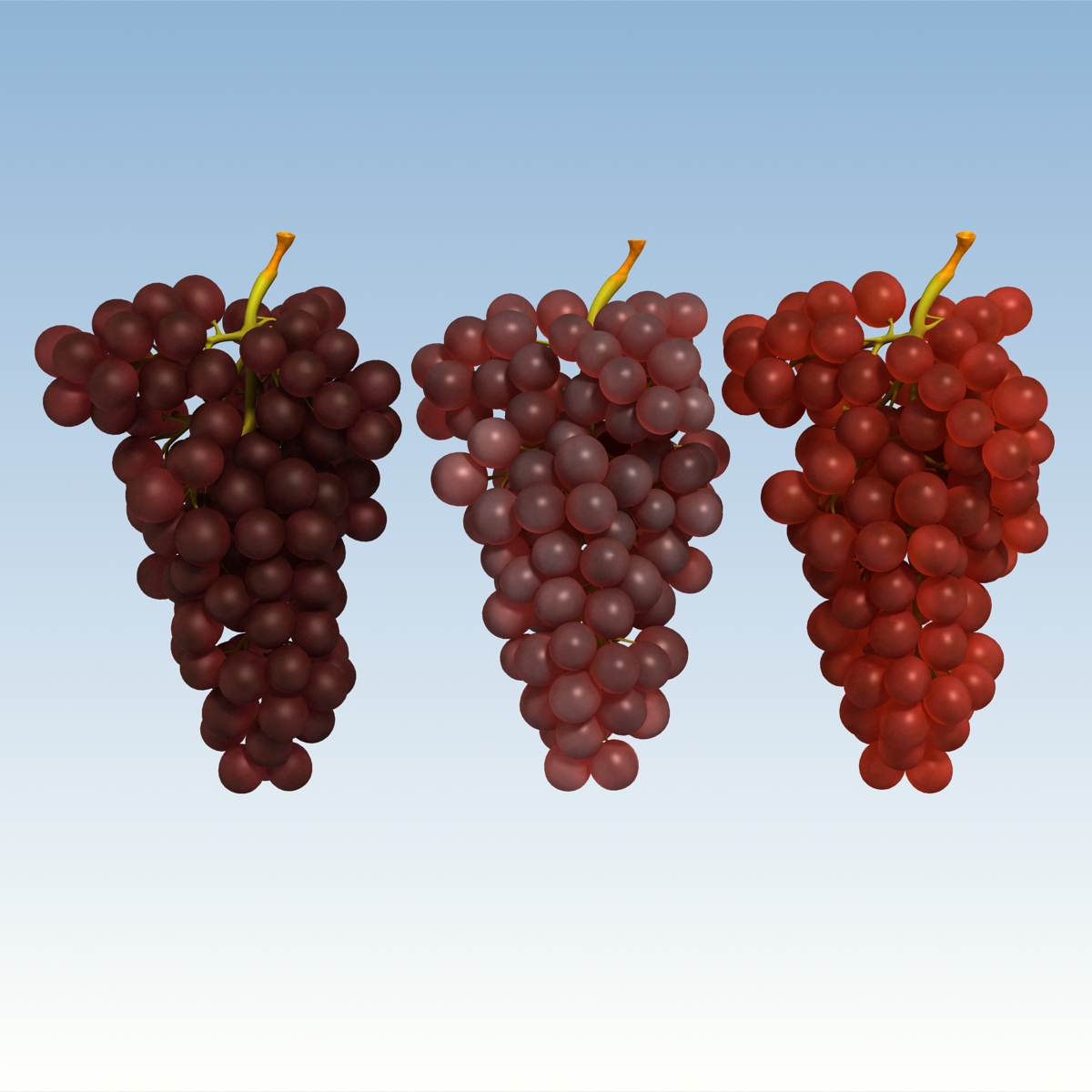 grapes red 3d model 3ds max fbx c4d lwo obj 204255