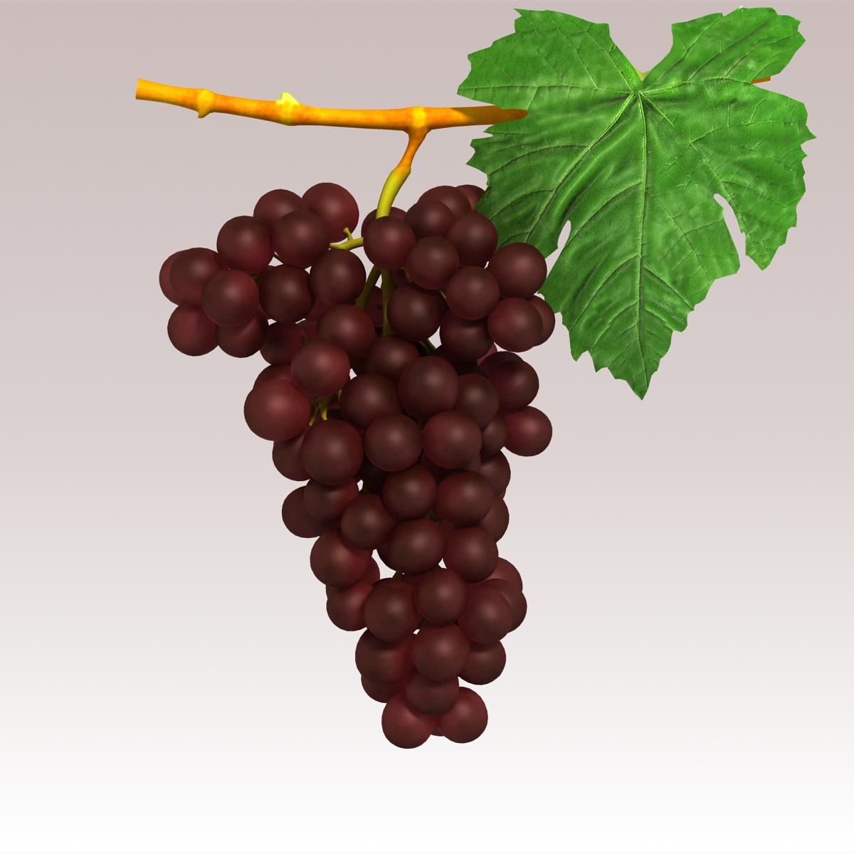 grapes red 3d model 3ds max fbx c4d lwo obj 204256