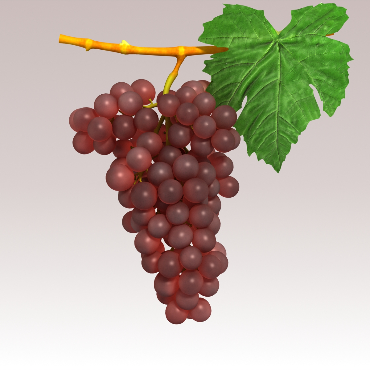 grapes red 3d model 3ds max fbx c4d lwo obj 204257