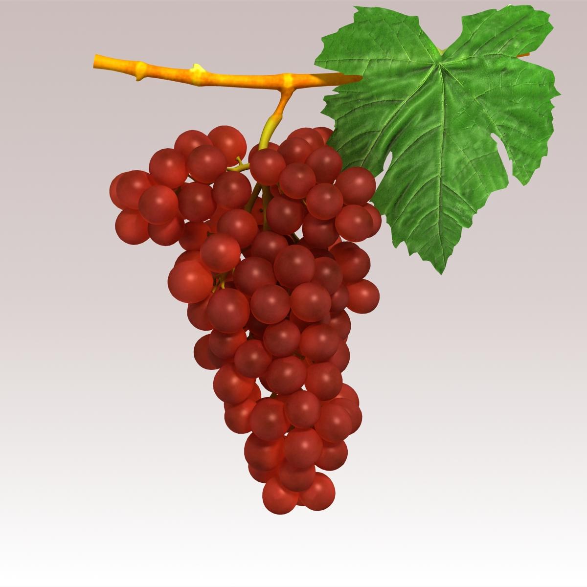 grapes red 3d model 3ds max fbx c4d lwo obj 204258