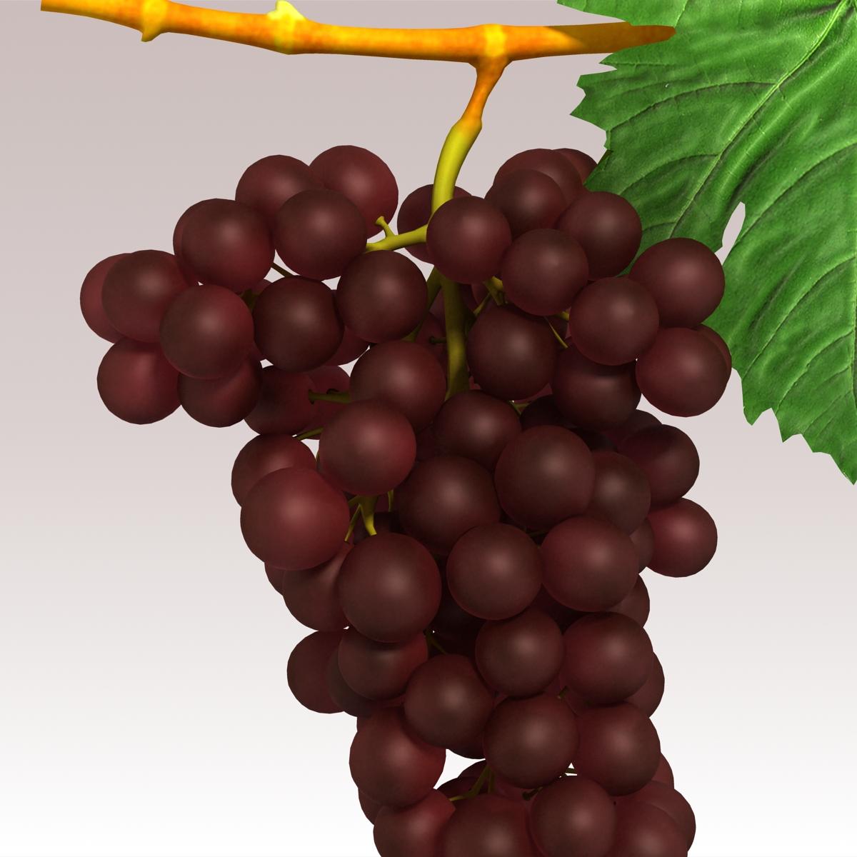 grapes red 3d model 3ds max fbx c4d lwo obj 204259
