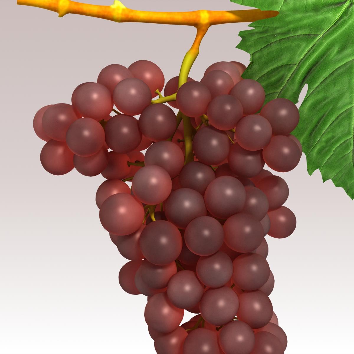 grapes red 3d model 3ds max fbx c4d lwo obj 204260