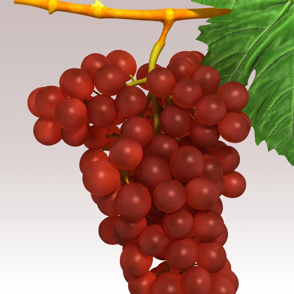 grapes red 3d model 3ds max fbx c4d lwo obj 204261