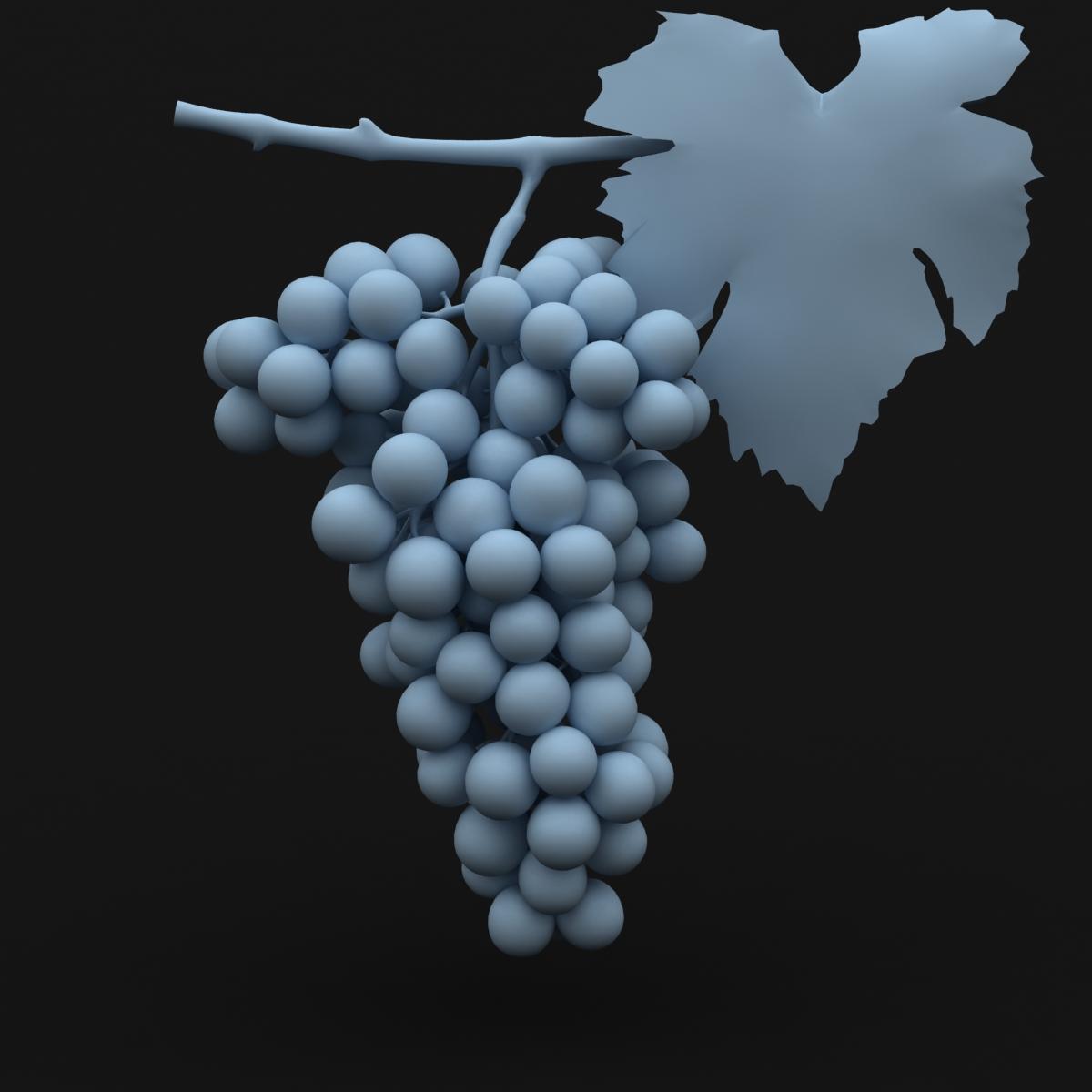 grapes red 3d model 3ds max fbx c4d lwo obj 204262