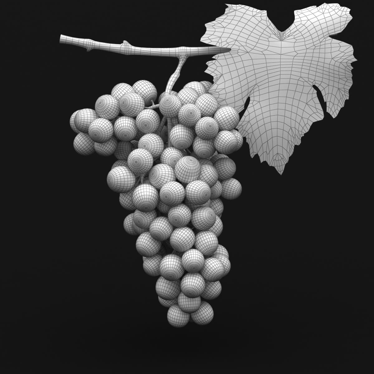 grapes red 3d model 3ds max fbx c4d lwo obj 204263