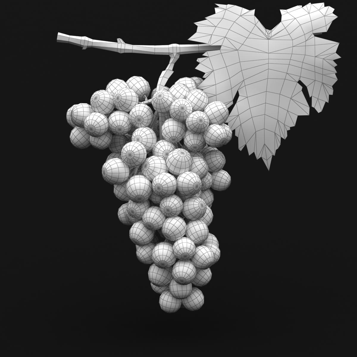 grapes red 3d model 3ds max fbx c4d lwo obj 204264