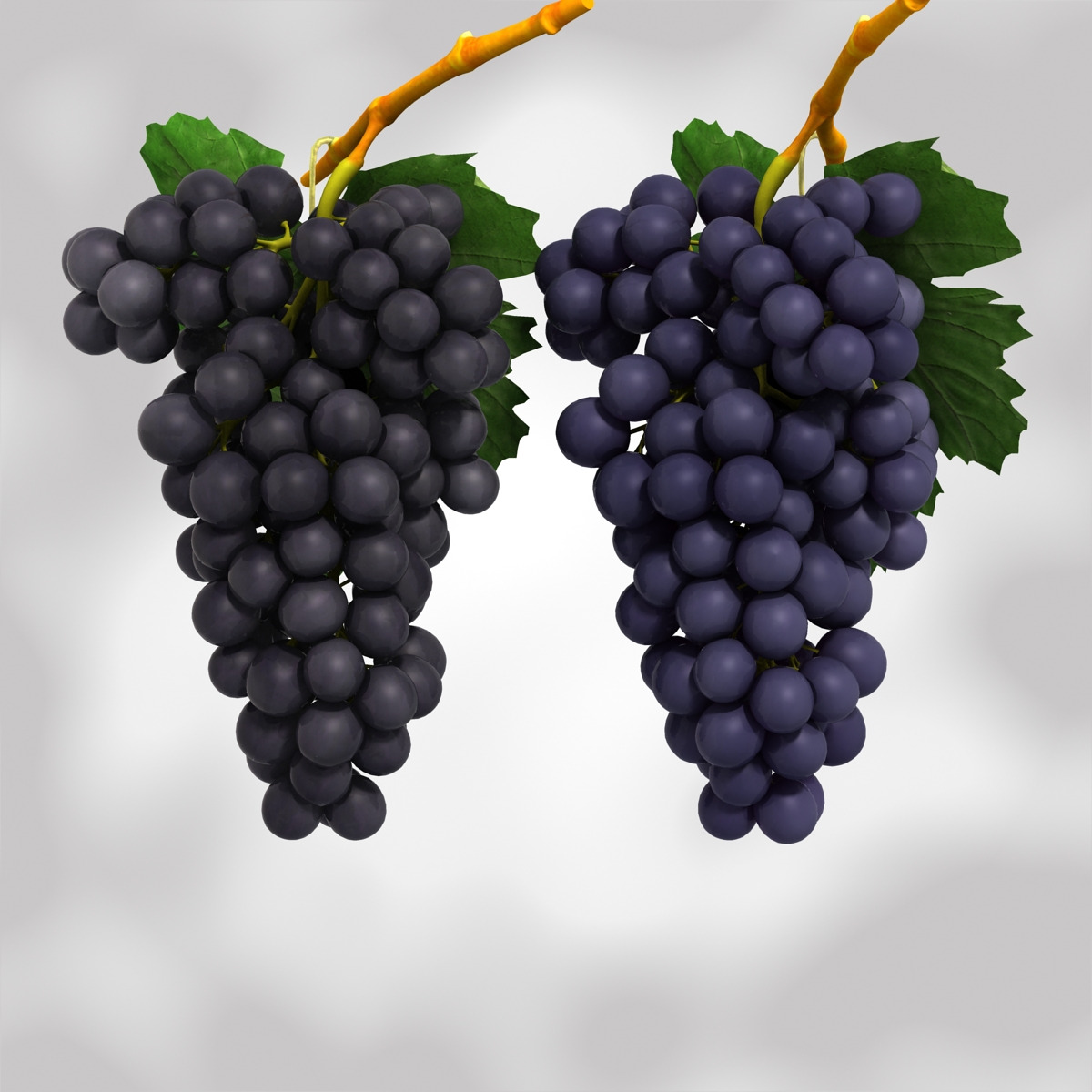 grapes black and blue 3d model 3ds max fbx c4d obj 204266