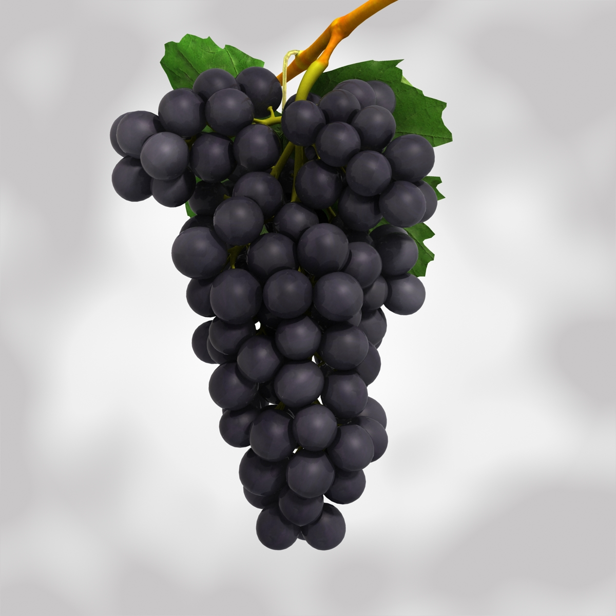 grapes black and blue 3d model 3ds max fbx c4d obj 204267