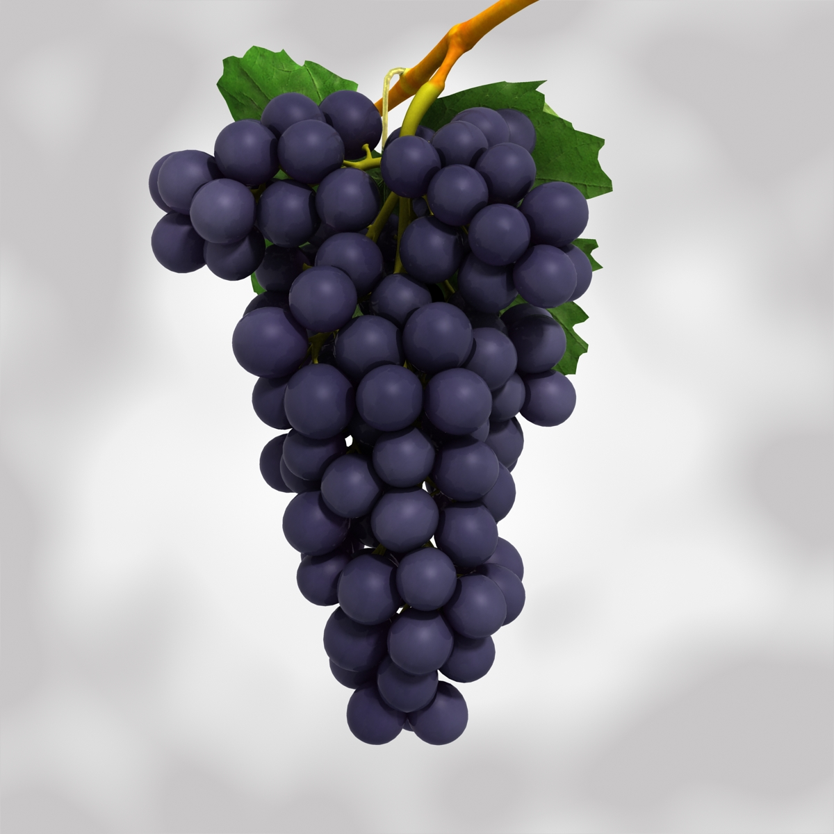 grapes black and blue 3d model 3ds max fbx c4d obj 204268