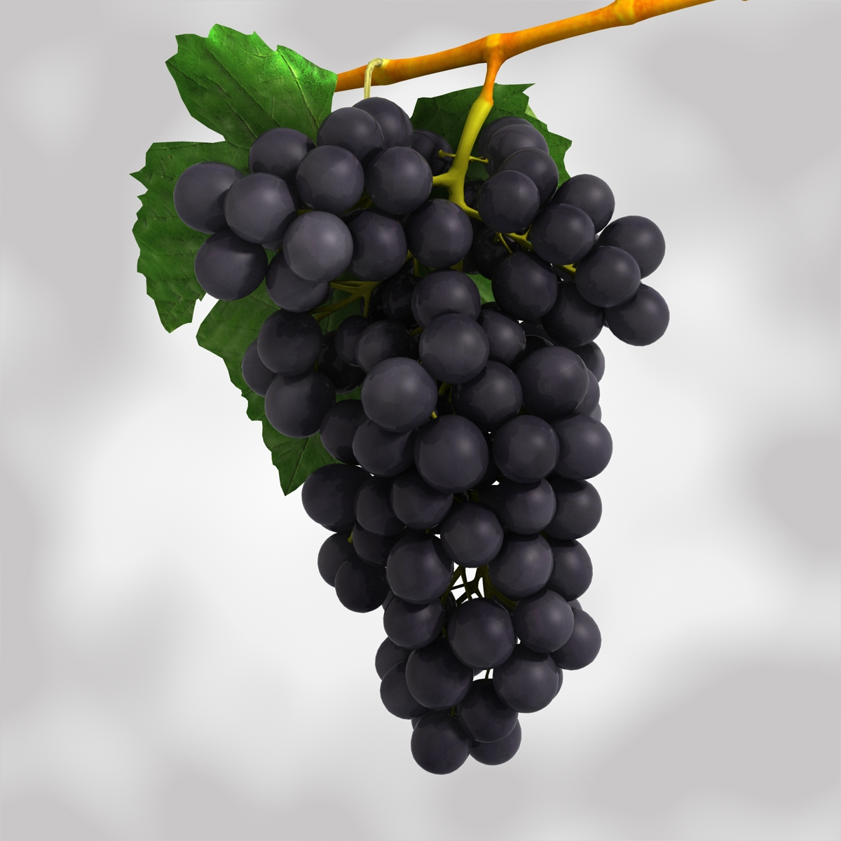 grapes black and blue 3d model 3ds max fbx c4d obj 204269