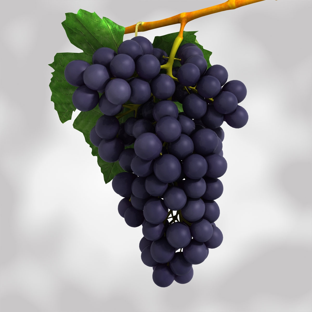 grapes black and blue 3d model 3ds max fbx c4d obj 204270