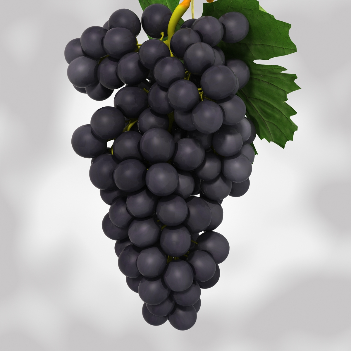 grapes black and blue 3d model 3ds max fbx c4d obj 204271