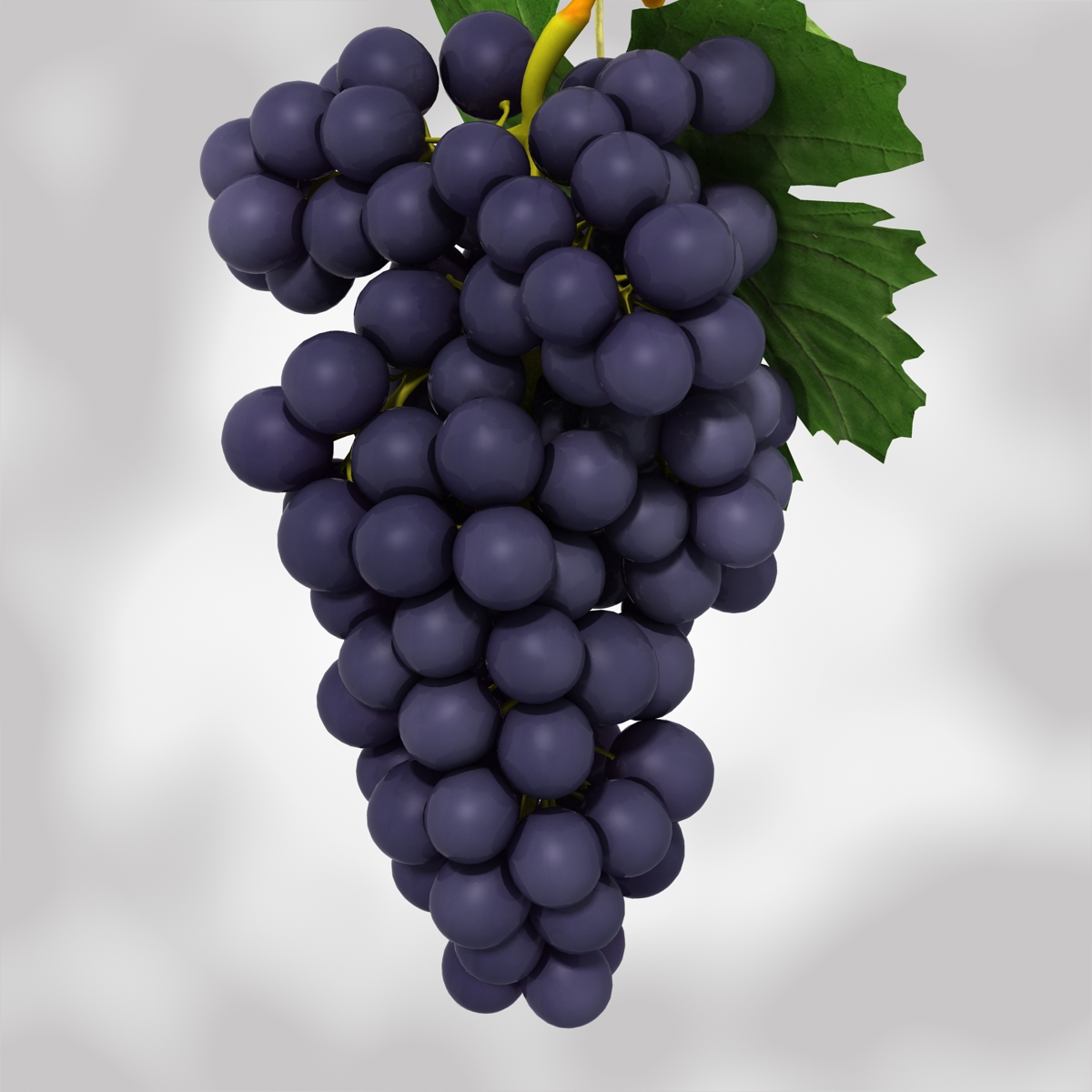 grapes black and blue 3d model 3ds max fbx c4d obj 204272