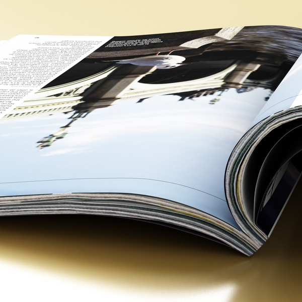 magazine 01 3d model 3ds max fbx texture obj 204408