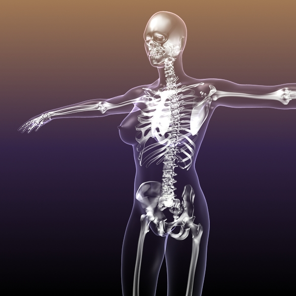 Female Skeleton Inside Woman Body 3d Model Buy Female Skeleton