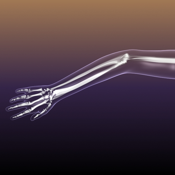 Female Skeleton inside Woman Body