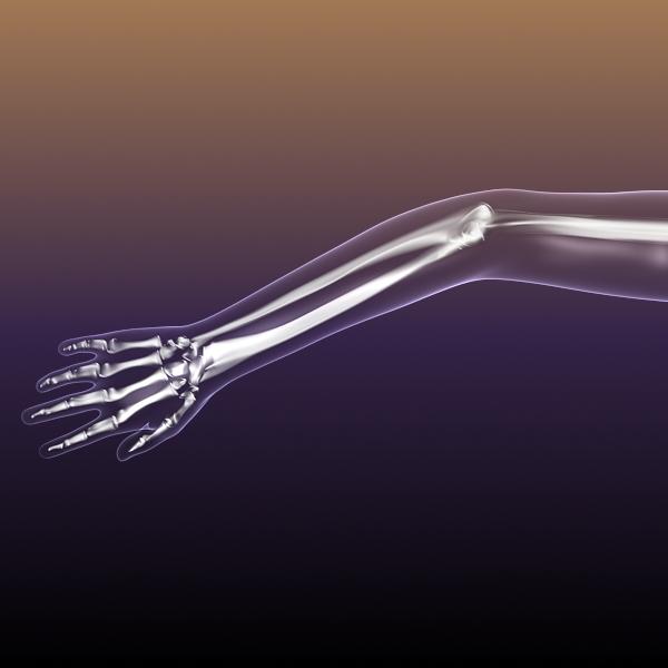 Female Skeleton inside Woman Body ( 117.21KB jpg by 5starsModels )