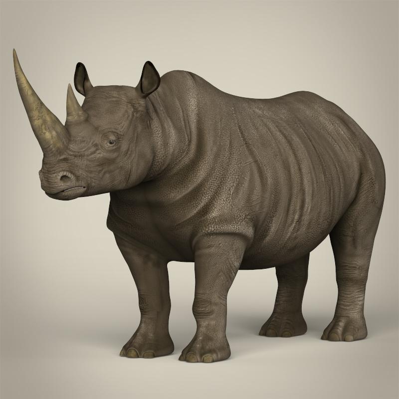 realistic rhinoceros 3d model 3ds max fbx c4d lwo ma mb obj 213435