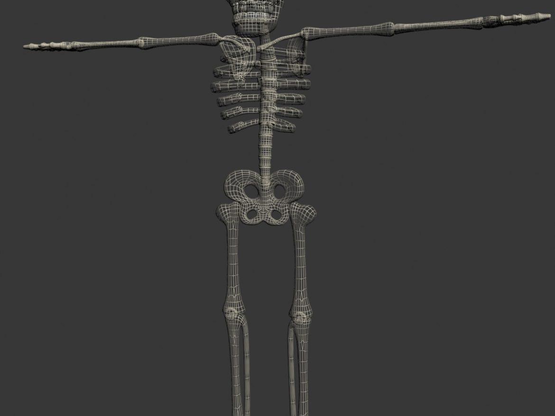 Cartoon Skeleton Rigged ( 404.29KB jpg by supercigale )