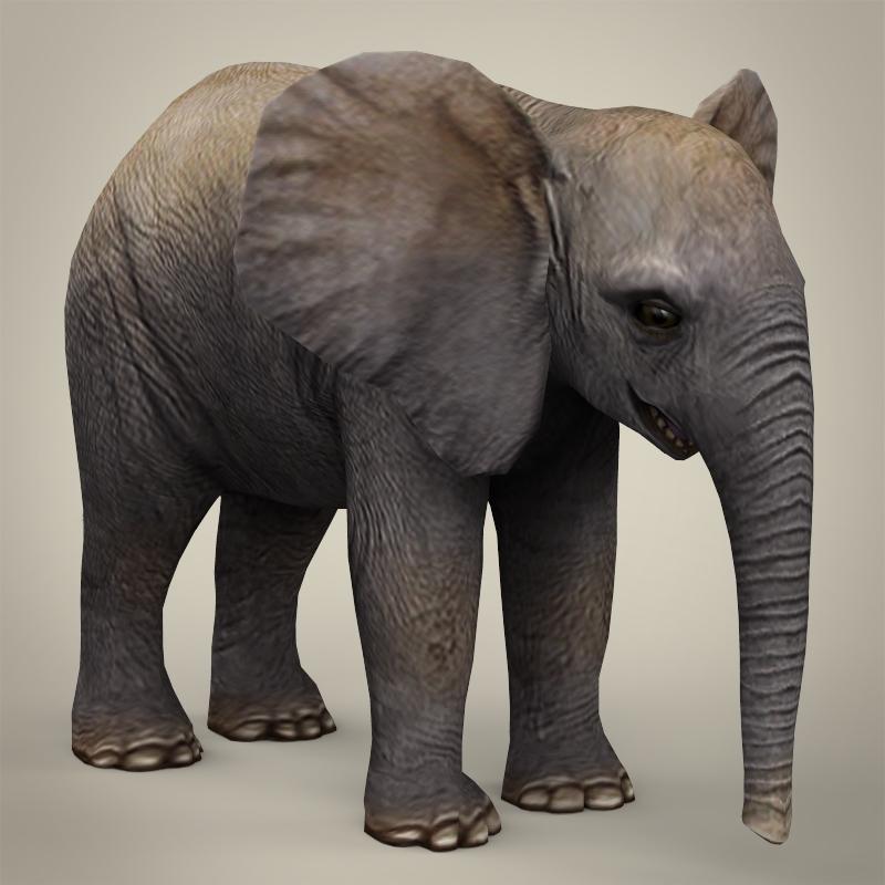 low poly realistic baby elephant 3d model 3ds max fbx c4d lwo ma mb obj 215154