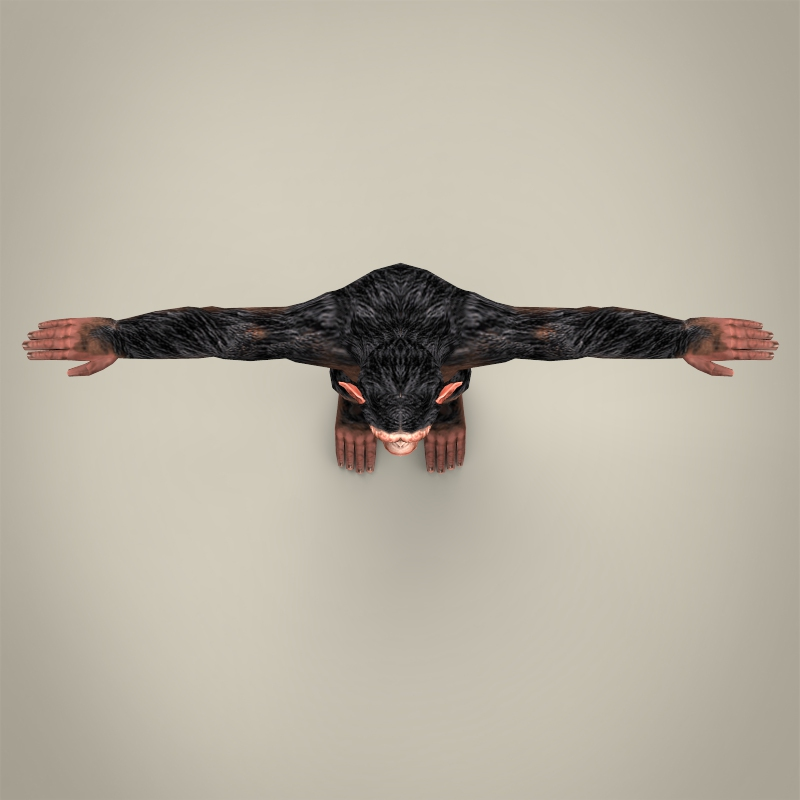 low poly realistic chimpanzee 3d model 3ds max fbx c4d lwo ma mb obj 215379