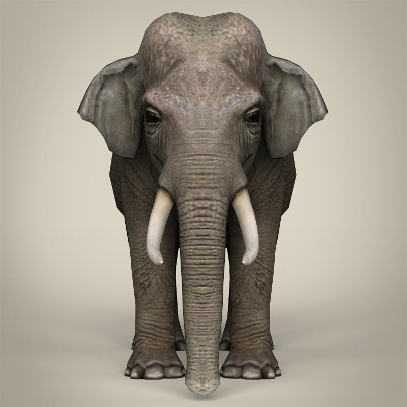 low poly realistic elephant 3d model 3ds max fbx c4d lwo ma mb obj 216577