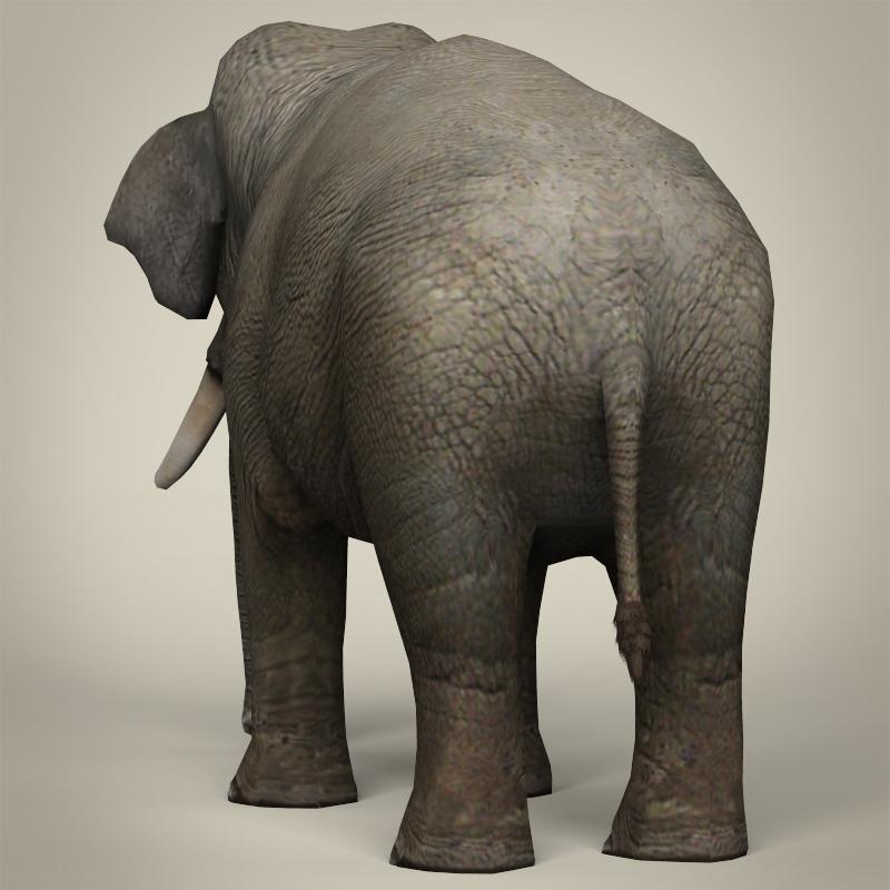 low poly realistic elephant 3d model 3ds max fbx c4d lwo ma mb obj 216579