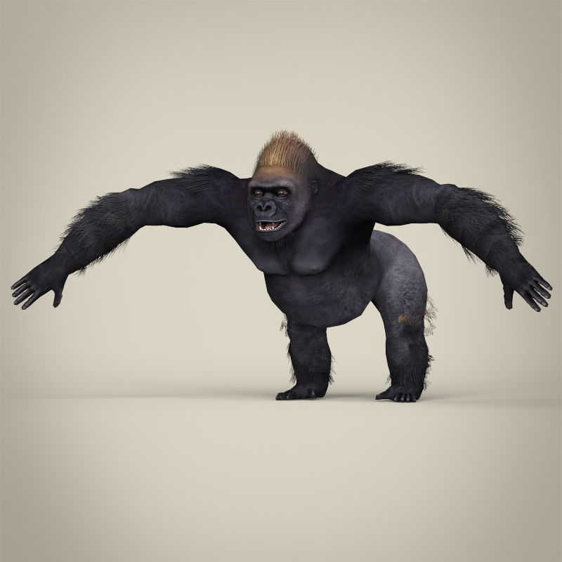 low poly realistic gorilla 3d model 3ds max fbx c4d lwo ma mb obj 216594