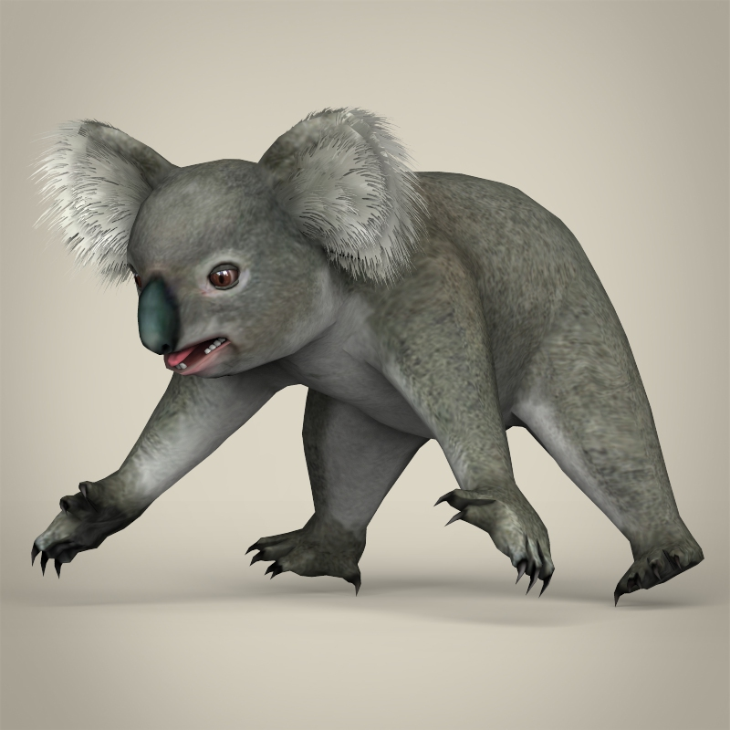 low poly realistic koala 3d model 3ds max fbx c4d lwo ma mb obj 216743