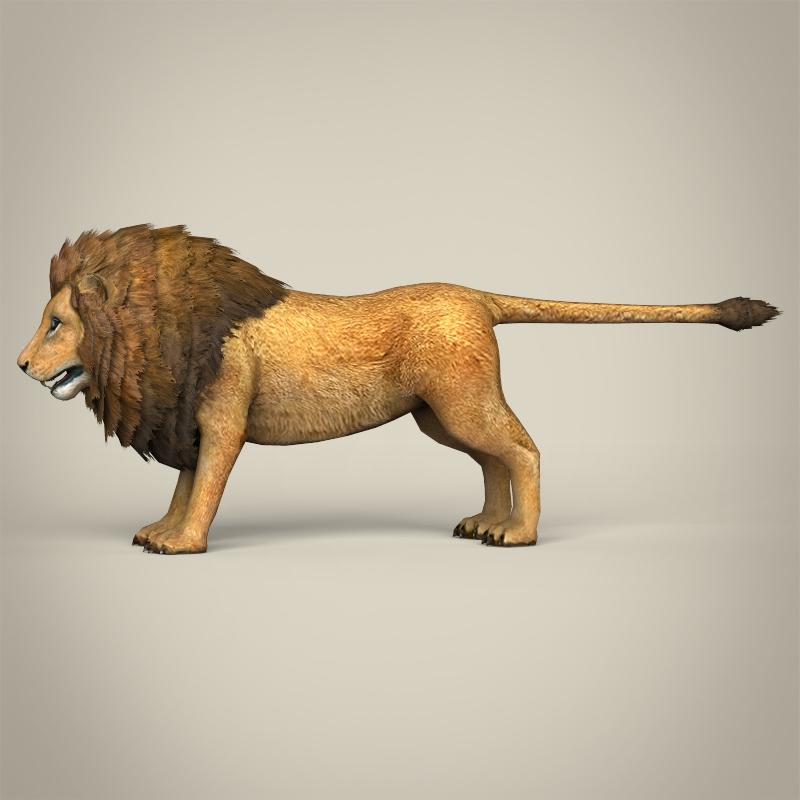 zems poli reālistisks lauva 3d modelis 3ds max fbx c4d lwo ma mb obj 216763