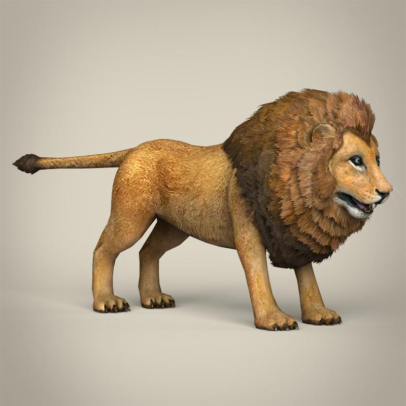 zems poli reālistisks lauva 3d modelis 3ds max fbx c4d lwo ma mb obj 216766