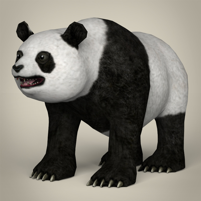 low poly realistic giant panda 3d model 3ds max fbx c4d lwo ma mb obj 216898