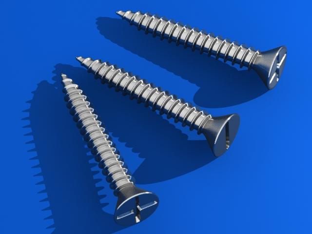 screws 3d v 3d model max fbx 216978