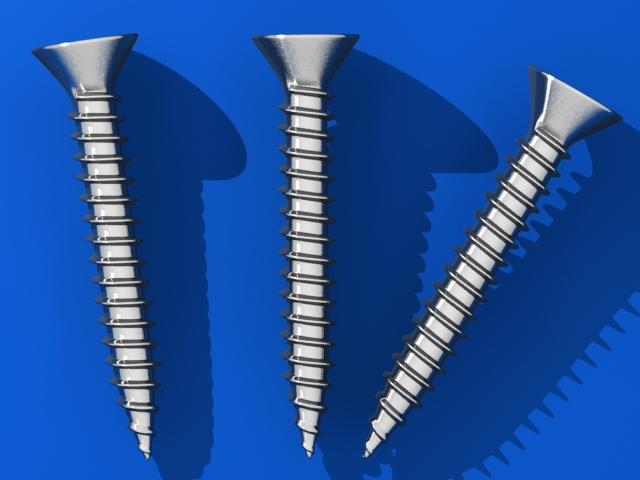 screws 3d v 3d model max fbx 216980