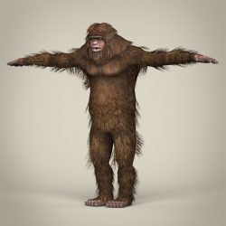Low Poly Realistic Sasquatch 3d model 0