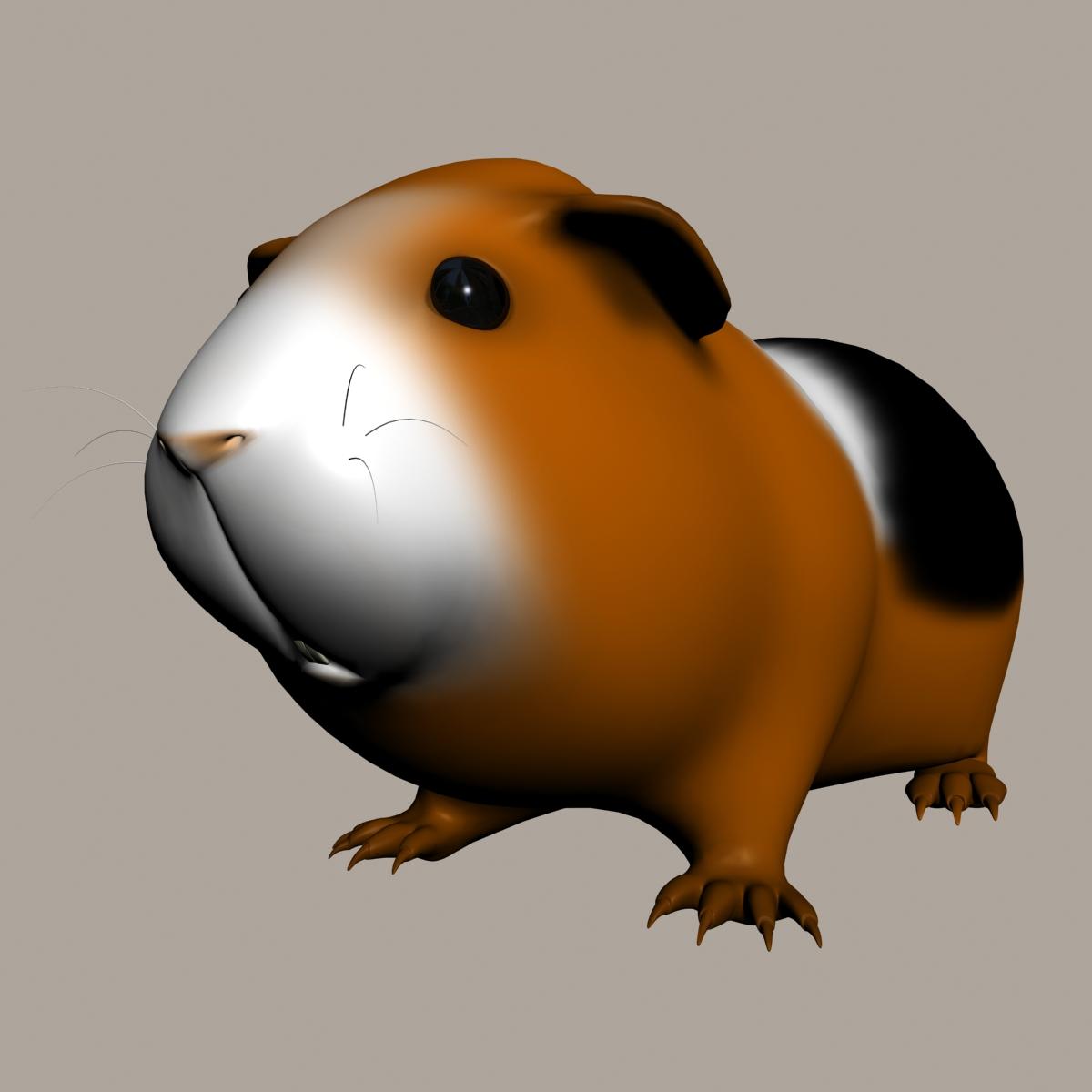 guinea-pig-cavia-porcellus-rigged-3d-mod