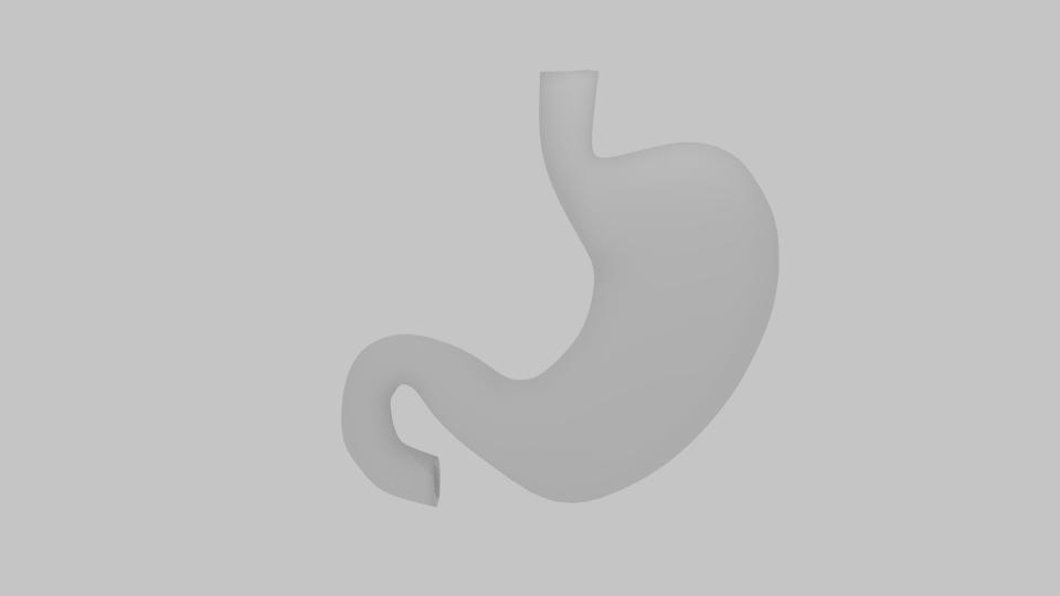 stomach 3d model blend 218071