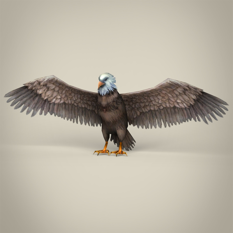 Low Poly Realistic Eagle 3d model 3ds max fbx c4d lwo ma mb obj 218190