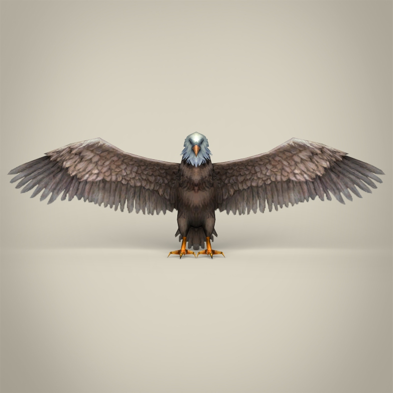 low poly realistic eagle 3d model 3ds max fbx c4d lwo ma mb obj 218191