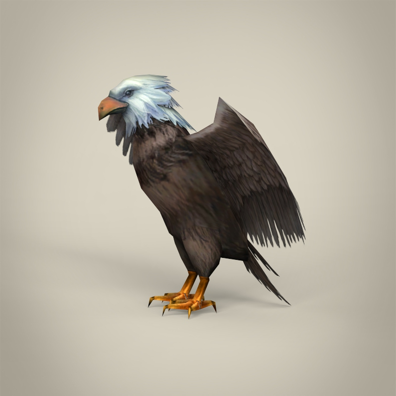 low poly realistic eagle 3d model 3ds max fbx c4d lwo ma mb obj 218192