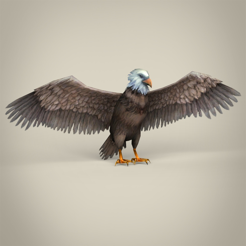 low poly realistic eagle 3d model 3ds max fbx c4d lwo ma mb obj 218195
