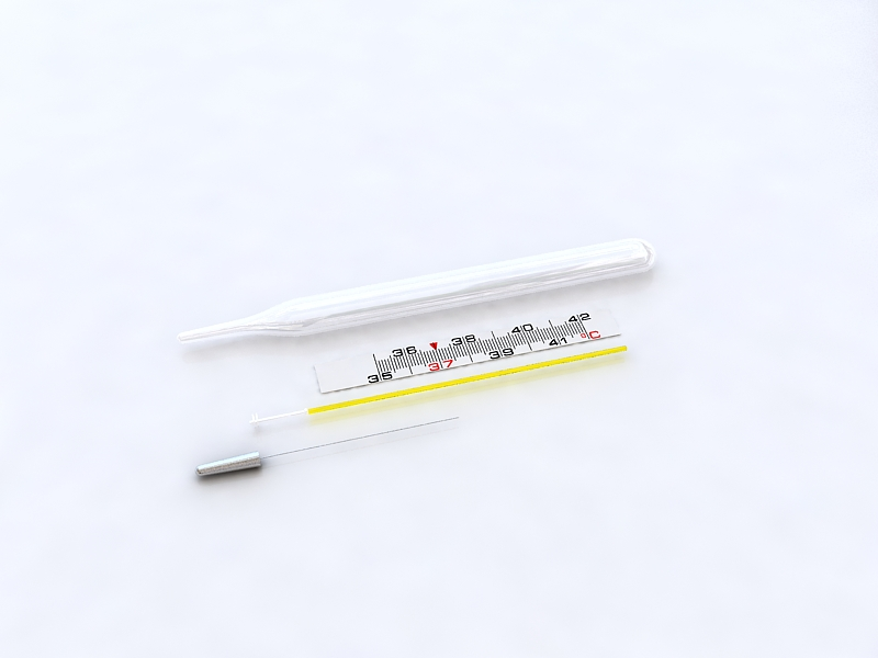 thermometer v2 3d model max 218454