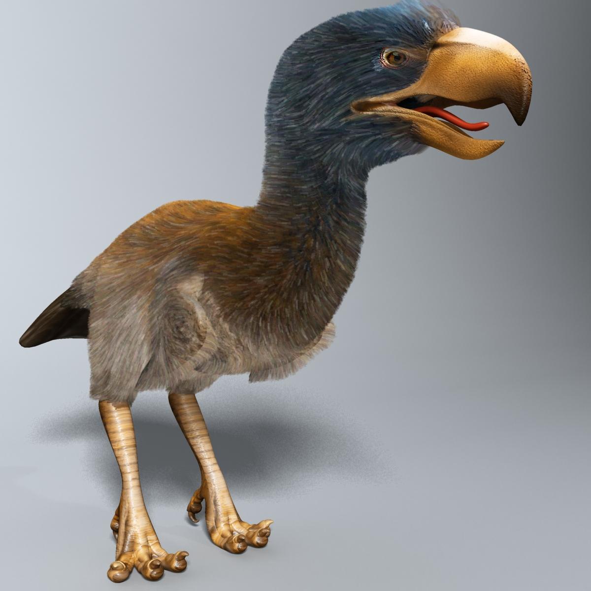 Titanis Walleri - Terror Bird RIGGED 3d model 3ds max fbx  obj 220039