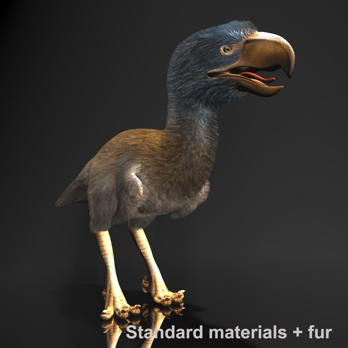 3d bird