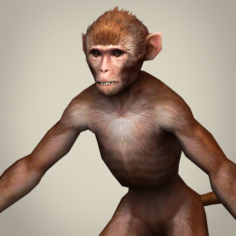 game ready realistic monkey 3d model 3ds max fbx c4d lwo ma mb obj 220060