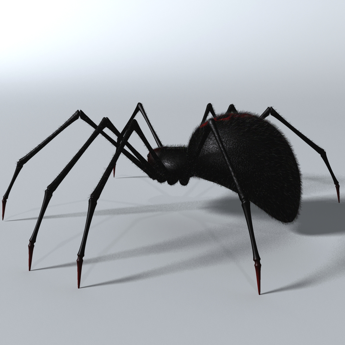 black spider rigged 3d model 3ds max fbx  obj 221105