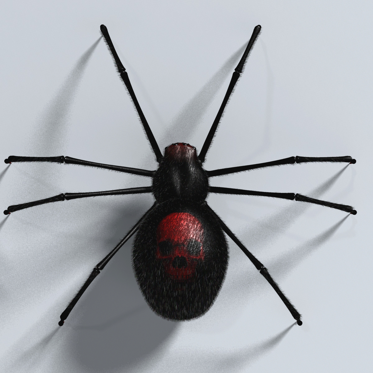 black spider rigged 3d model 3ds max fbx  obj 221107