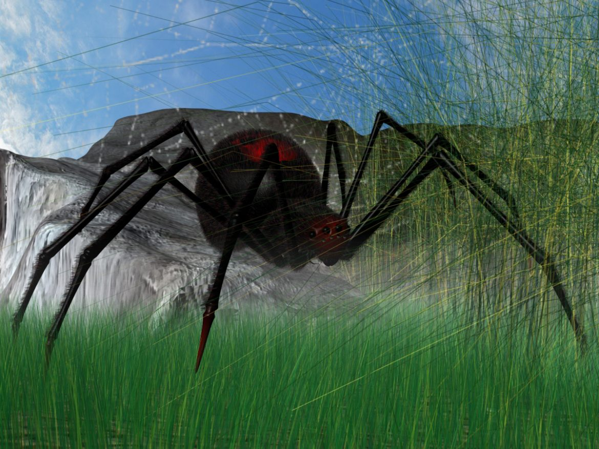 Black Spider Rigged ( 1419.23KB jpg by supercigale )